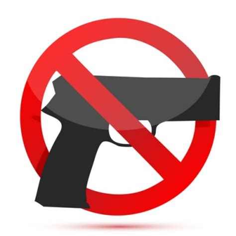 Essay Pros And Cons Of Gun Ownership - All Star Home Group