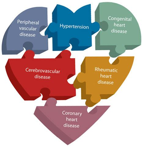 Research study on rheumatic heart disease